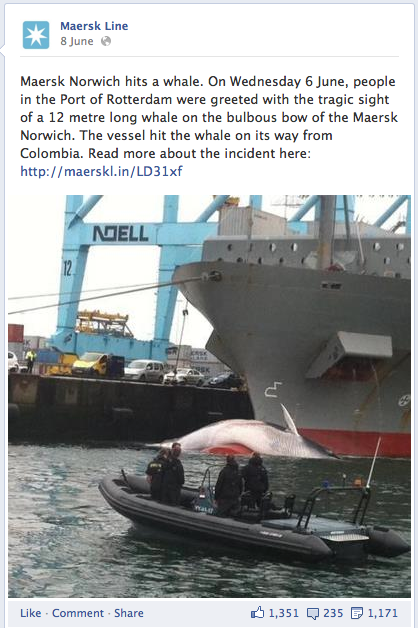 The post on Facebook describing Maersk Norwich's encounter with a whale. Note the so-called 'like-to-share' ratio which is almost 1 to 1.